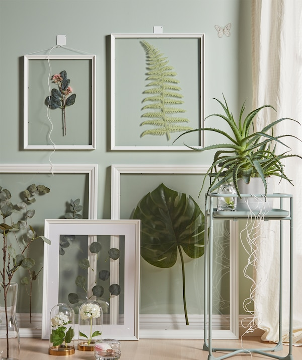 A wall section with different displays of artificial plants and leaves: large, clear frames, small glass domes, plant stand.