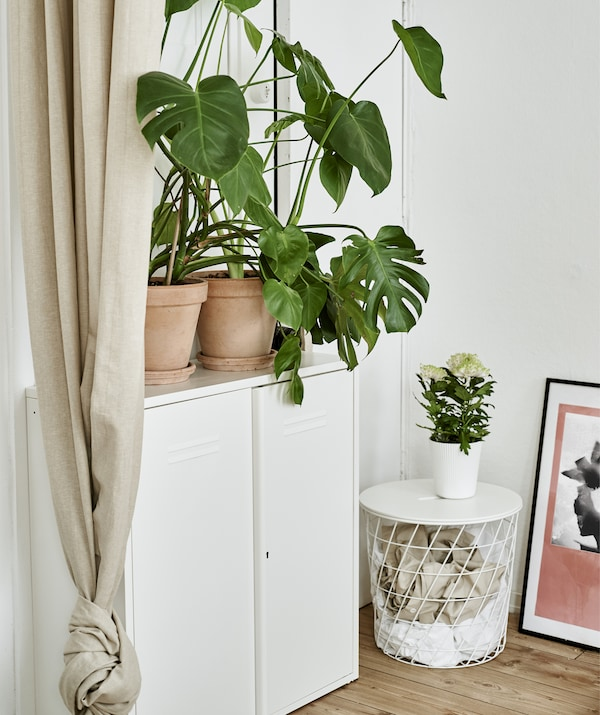 A white metal cabinet, storage table and plants.
