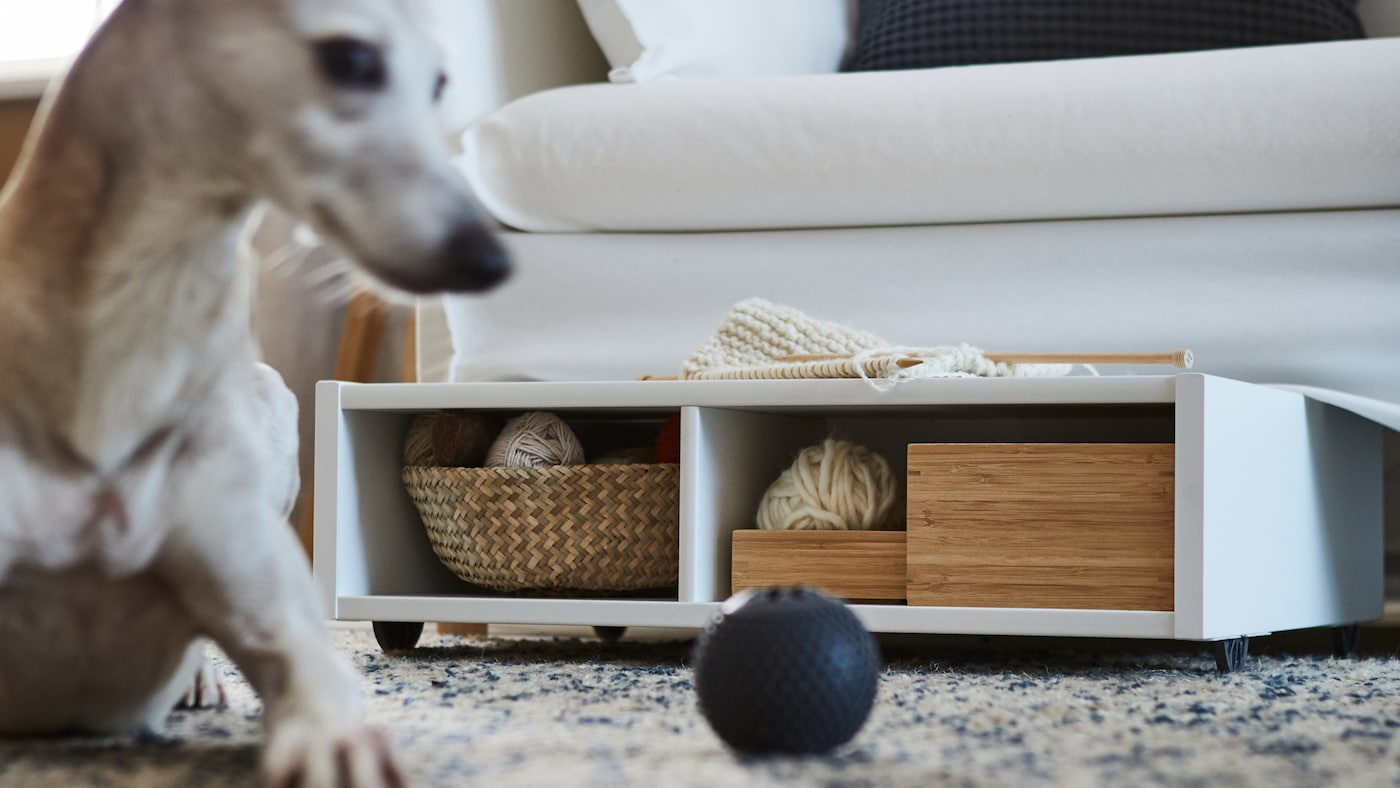 A white underbed storage/bedside table with castors with boxes and a basket inside under a sofa, a rug, a dog and a ball.