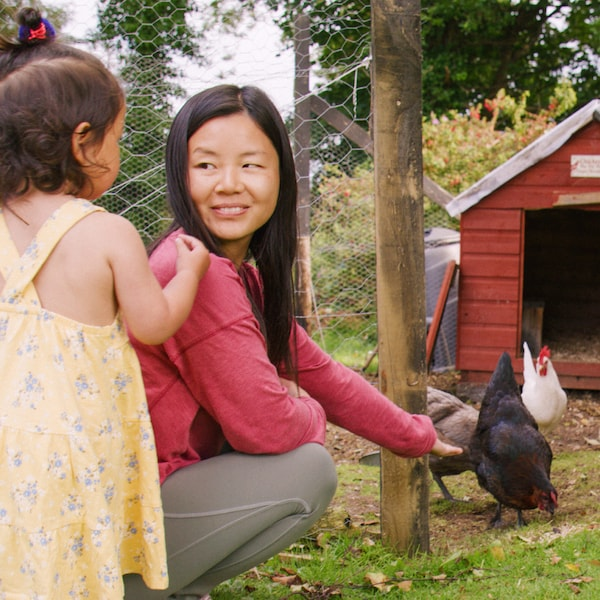 A woman with long dark hair and a red sweater is feeding her chickens together with her little daughter.