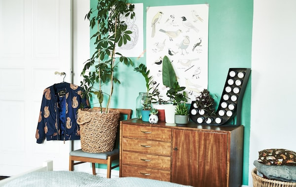 A wooden chair and cabinet holding potted plants of different sizes in a bedroom with a light-green wall.