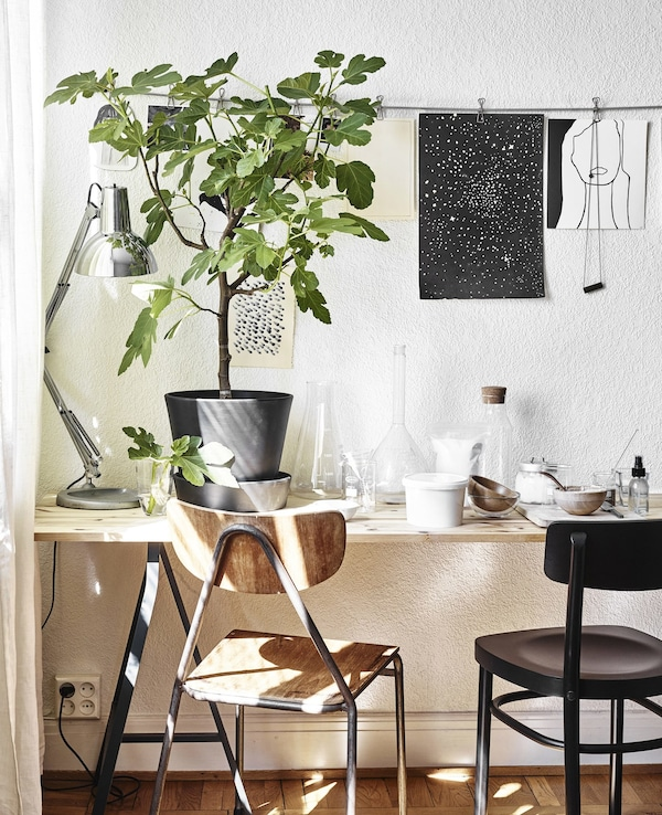 A wooden desk with plants and a lamp.