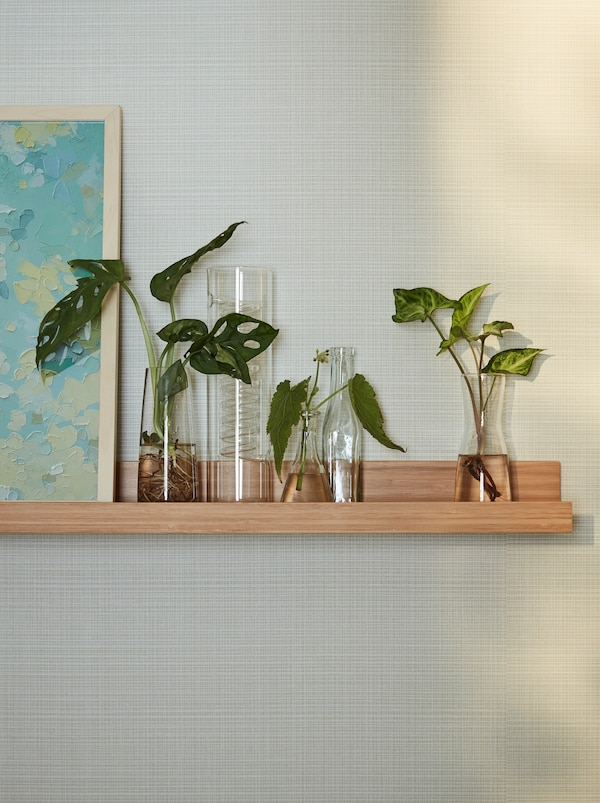 A wooden MÅLERÅS picture ledge on a wall with three contemporary vases and one IKEA PS candlestick vase with plantlets.