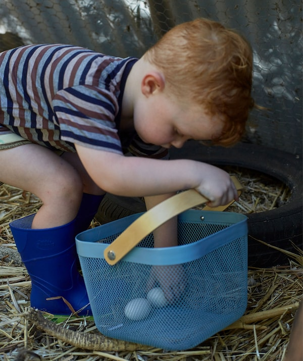 A young child collecting fresh eggs in a blue basket.