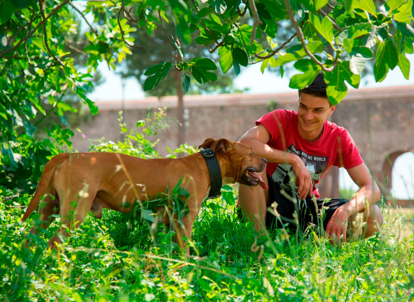 A young man crouching next to a dog in the grass under a tree.