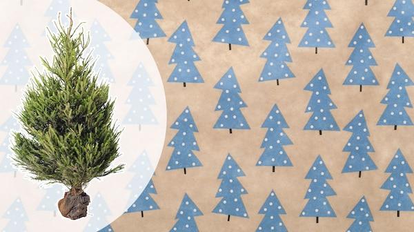 Albero di Natale - IKEA