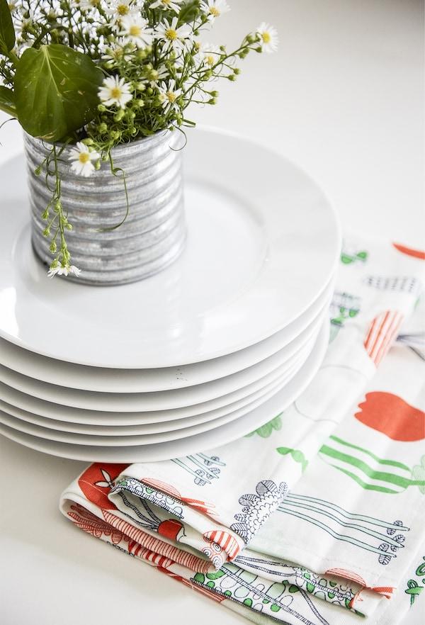 عقل نباتات معروضة أعلى مجموعة من الأطباق.