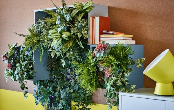 How To Grow Plants Indoors Ikea