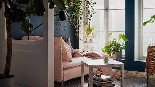 أريكة استرخاء يجانب نافذة طويلة مضاءة بنور الشمس. وسائد، بطانية ومصباح قراءة. نباتات على تتدلى من على حافة نافذة، وعلى الرفوف الجدارية.
