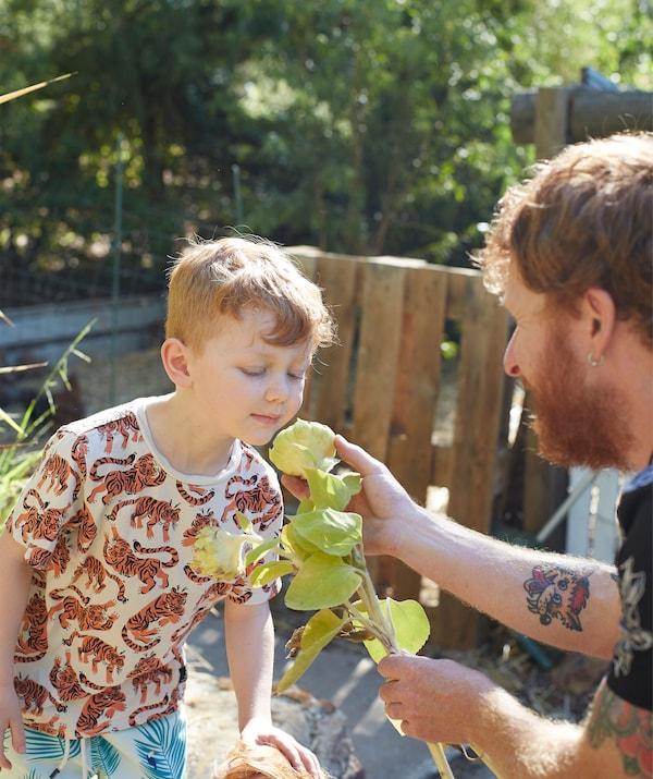 Au jardin, Ben fait sentir une fleur à son fils.
