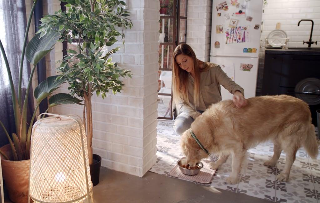 Imagem de uma menina com um cão grande, amarelo. O cão está a beber água numa taça LURVIG.