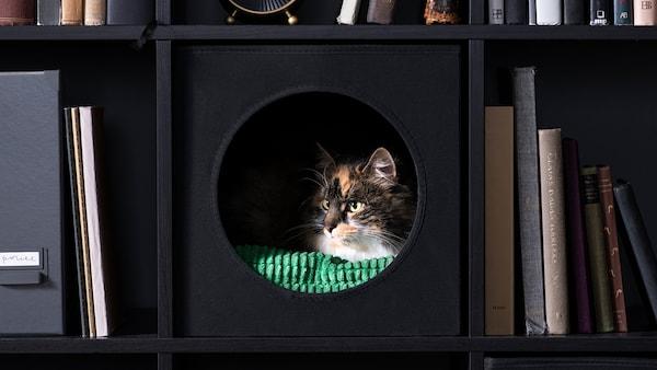 Animalerie Ikea
