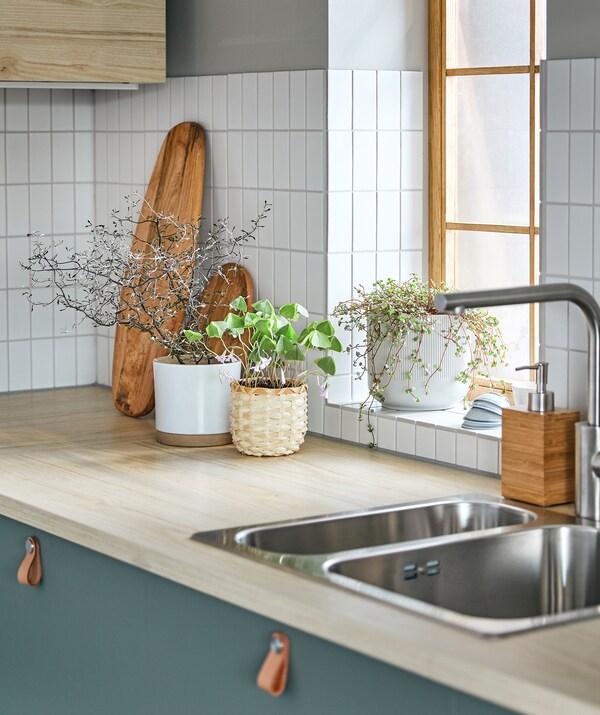 Багато різновидів рослин у декоративних горщиках розміщені на кухонній стільниці та на освітленому сонцем підвіконні.