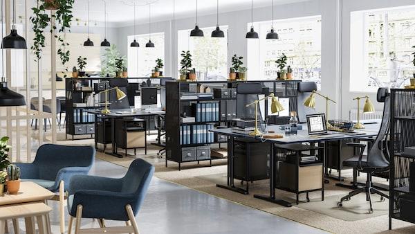 BEKANT/ベカントの黒いメッシュのシェルフユニットと昇降式デスクがある緑豊かなオフィススペース。シェルフユニットの上に植物が置かれている。