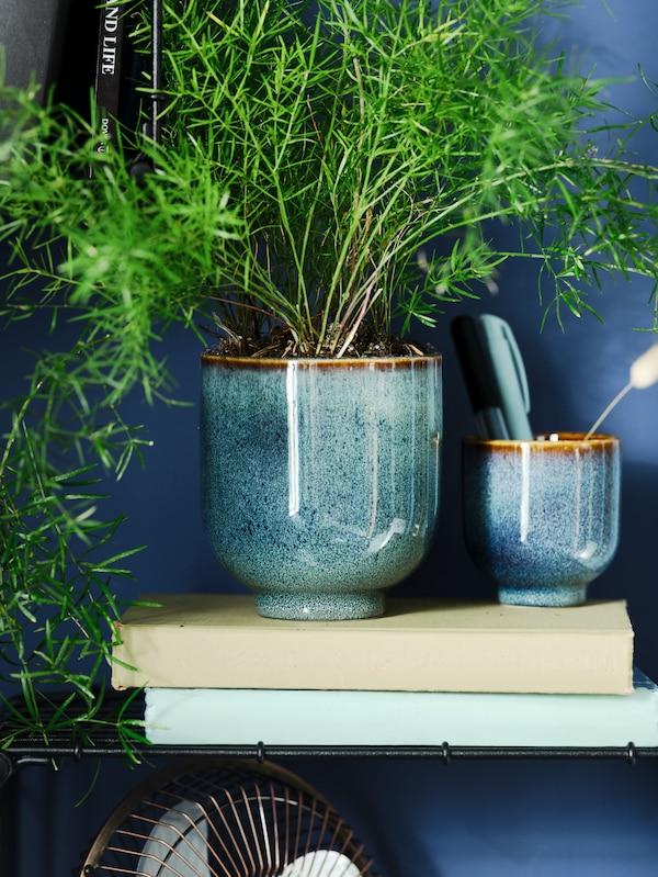 Blåturkosa krukor i två olika storlekar med gröna växter.