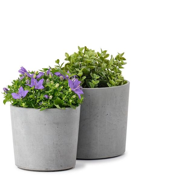BOYSENBÄR květináče, vn./venkovní světle šedá, 12 cm a 15 cm.