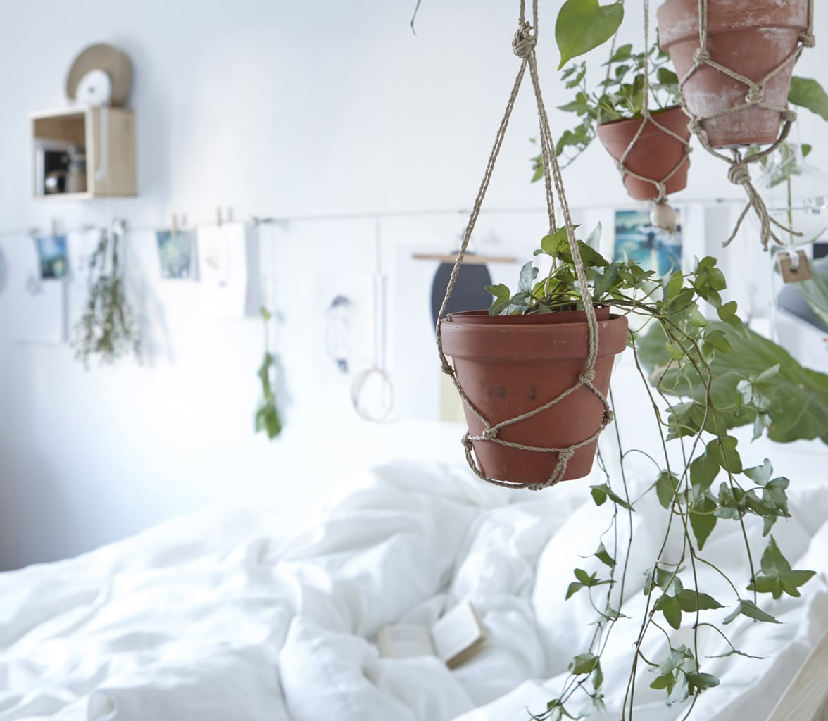Bring some green to your bedroom by hanging potted plants around the bed.