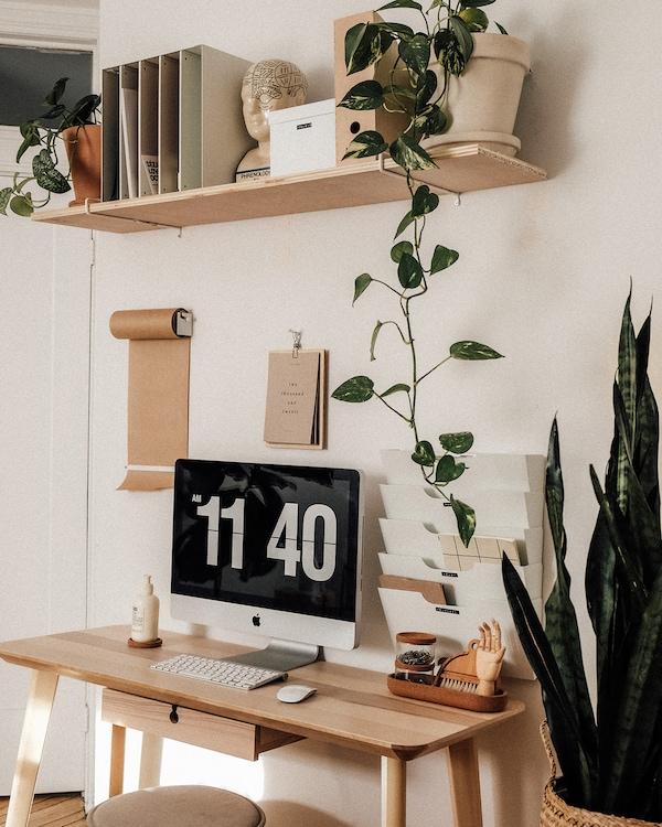 Bureau LISABO avec finition en frêne et plantes décoratives.