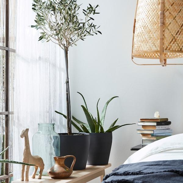 BUSKBO-rottinkituoli, jonka päällä valkoisia tyynyjä, tummanharmaat ja valkoiset verhot, penkki, viherkasveja ja harmaa matto.