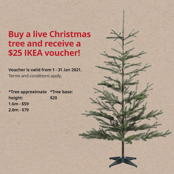Buy a live Christmas tree and receive a $25 IKEA voucher!