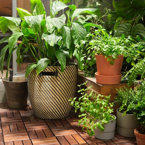 cache-pot-ragkorn-interieur-exterieur