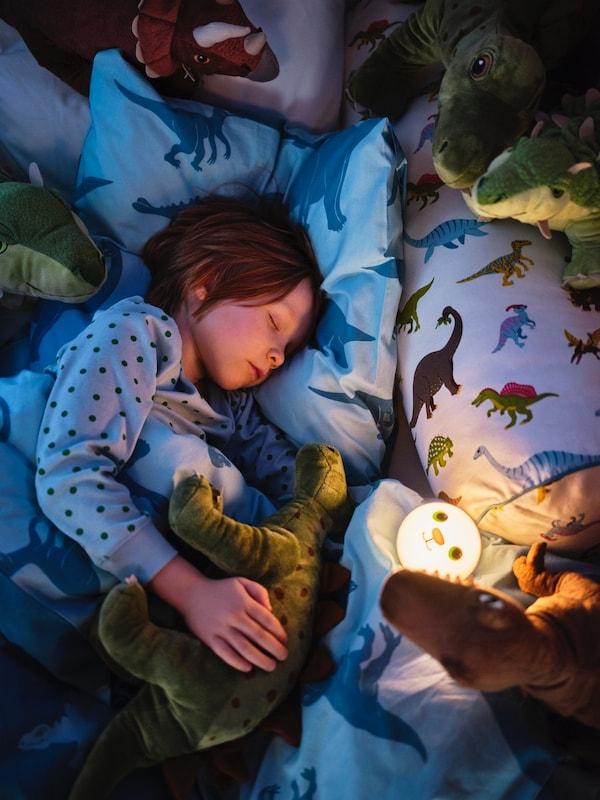 Campagnons de nuit pour petits paléontologues