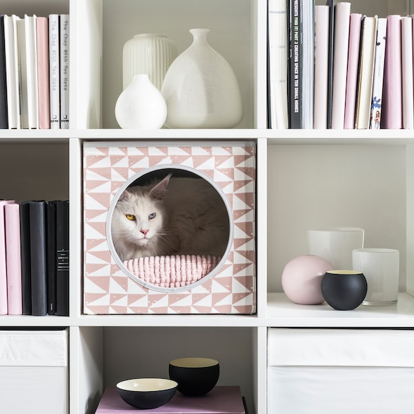 Cat in patterned, cube-shaped cat house placed in bookcase; books and decorations fill the compartments around the cat.