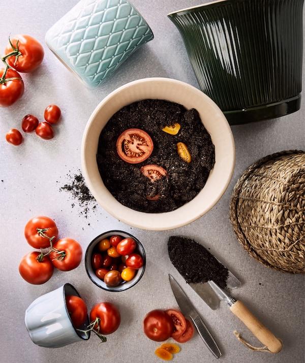 Ceramiczne i rattanowe doniczki, dojrzałe pomidory i plasterki żółtych i czerwonych pomidorów sadzone w świeżej ziemi.