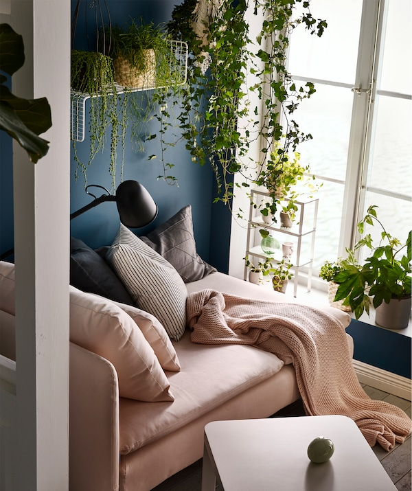 Chaise longue by a sunlit, tall window. Cushions, throw and reading lamp. Plants on the sill, hanging, and on wall shelves.