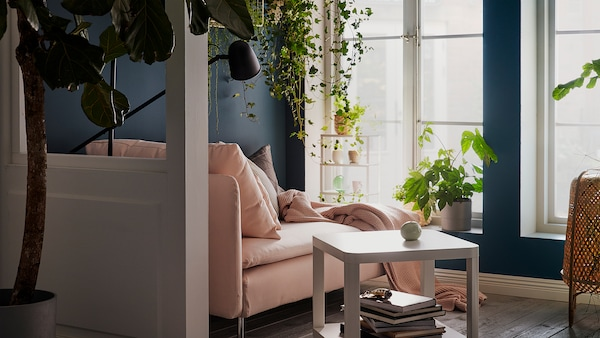 Chaise lounge by tall, sunlit windows, with cushions, throw and a reading lamp. Plants on the sill, hanging, and on wall shelves.
