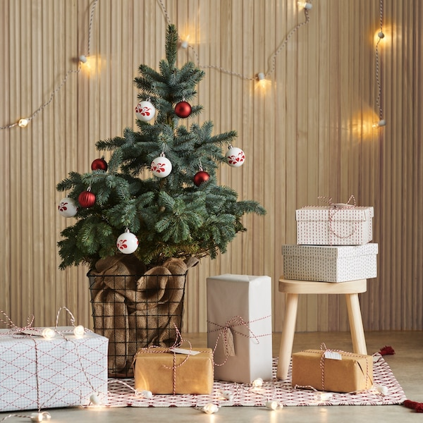 Christmas tree in a paper basket with boxes and gifts wrapped in coloured paper beneath.