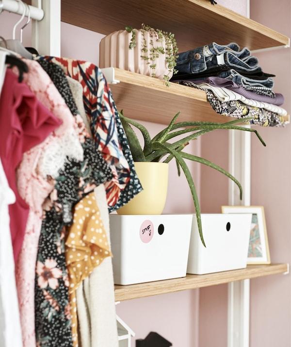 Cierre de estantes abiertos llenos de ropa, plantas y cajas.
