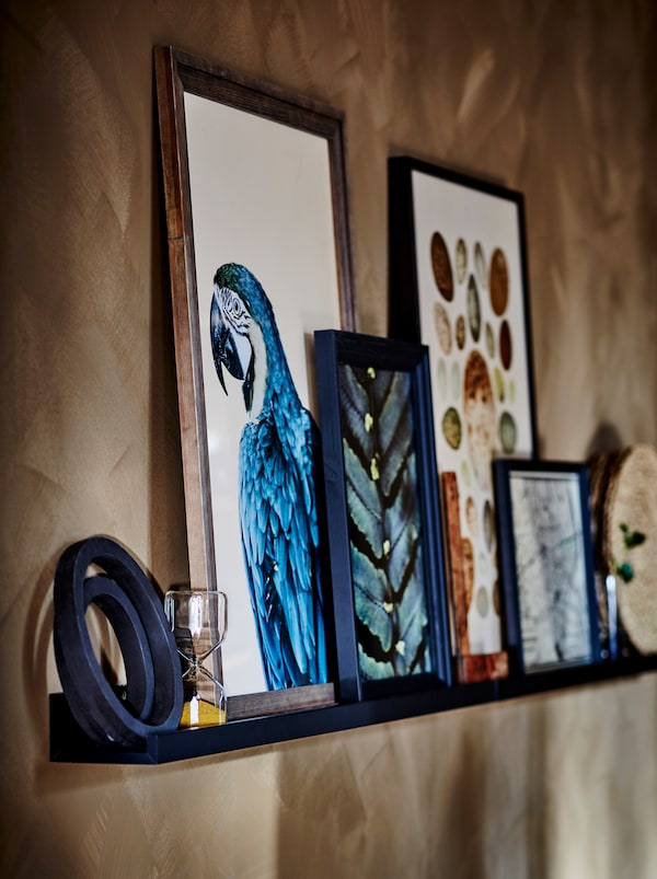 Cimaise bleu foncé MOSSLANDA sur laquelle sont exposés des cadres et des images, avec couleurs brunes, bleu foncé et noires.