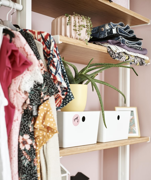 Close up of open storage shelves filled with clothes, plants and boxes.