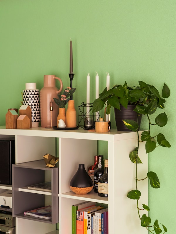 Coloured walls and IKEA plants create a spring-like atmosphere at home.