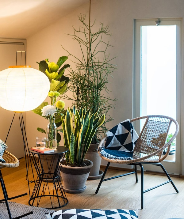 Creiamo una piccola zona conversazione davanti alla zona ingresso, con due sedute, un tavolino, tappeto e delle piante che ricevono luce naturale