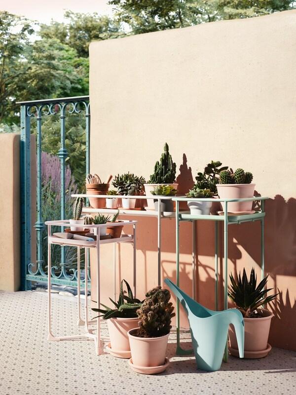 decorar con plantas la terraza
