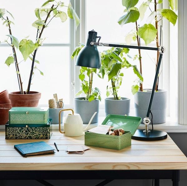 Dekoracje na stół do salonu