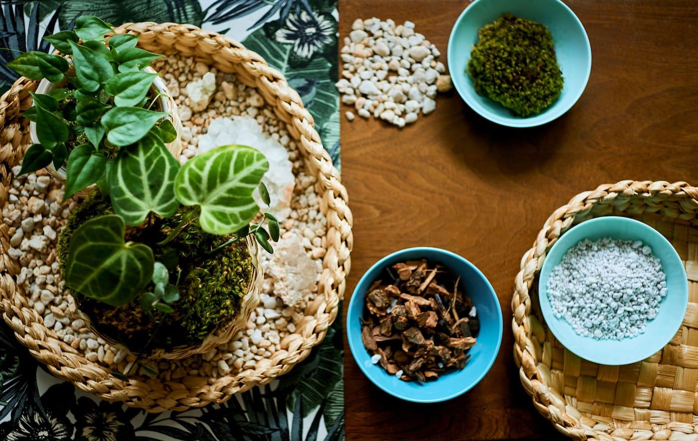 Deska stolu s látkou s květinovým tiskem, podnos s malými květinami, misky s hlínou a pískem