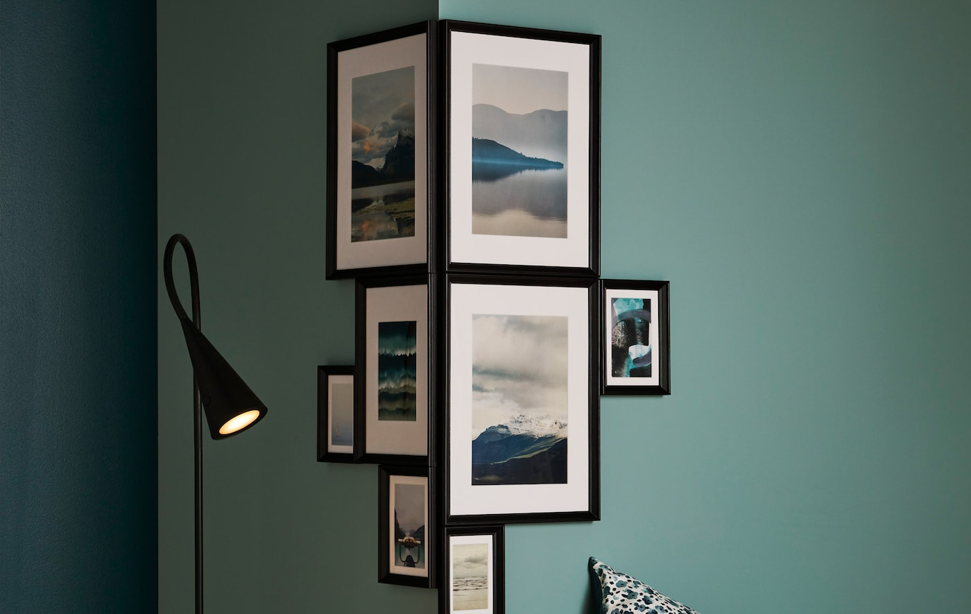 Different-size picture frames with themed motifs mounted closely around the corner of green room.