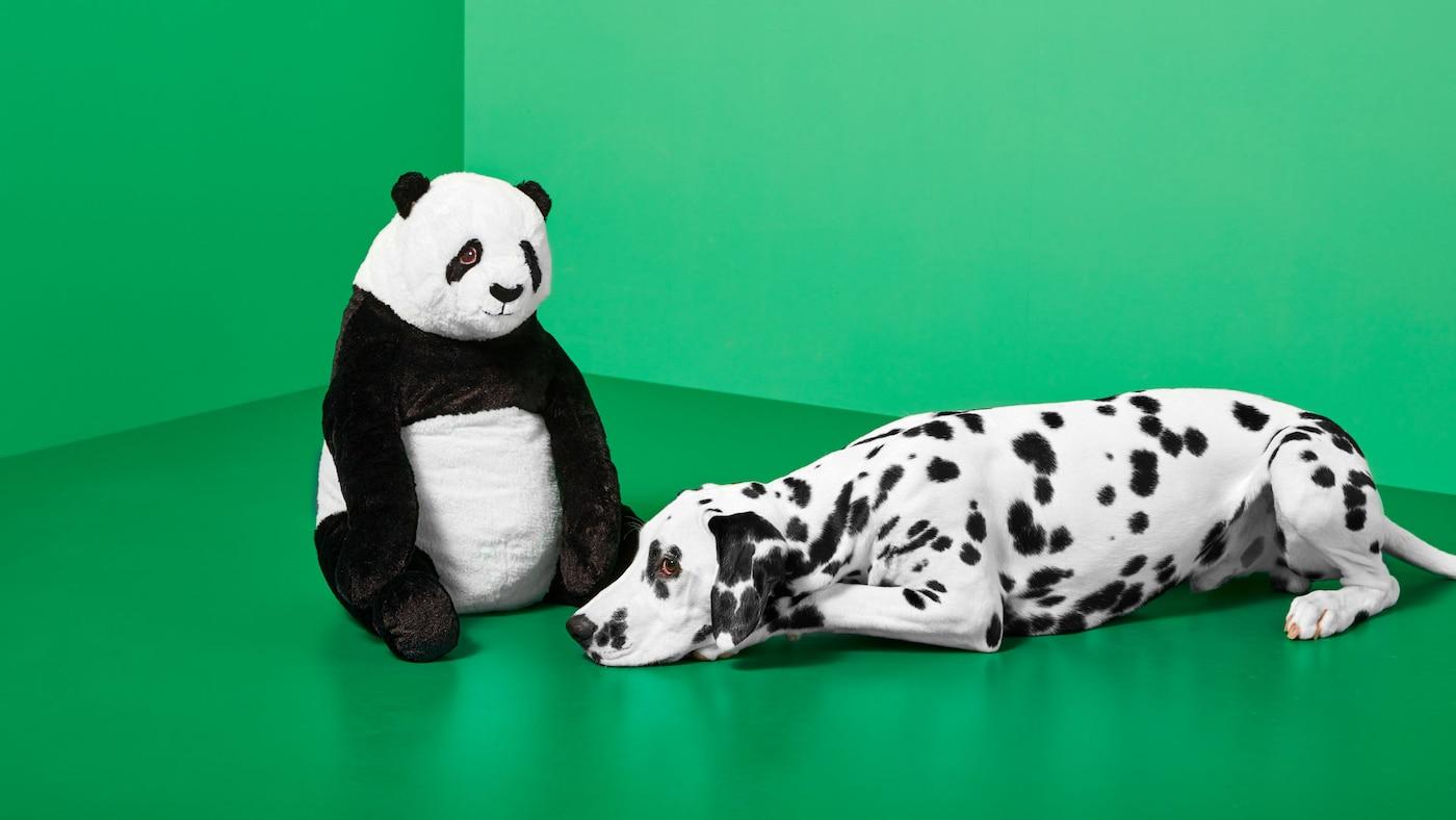 DJUNGELSKOG panda og en Dalmatiner i et grønt rum.