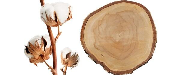 Du coton et du bois issus de sources plus durables
