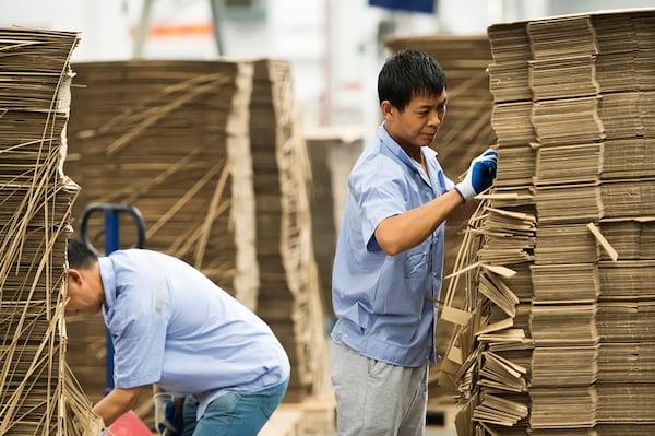 Due operai in camicia azzurra controllano delle pile di cartoni usando i guanti.
