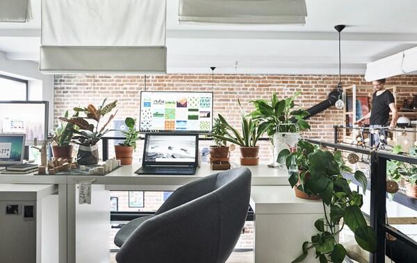 Due scrivanie affiancate, decorate con le piante – IKEA