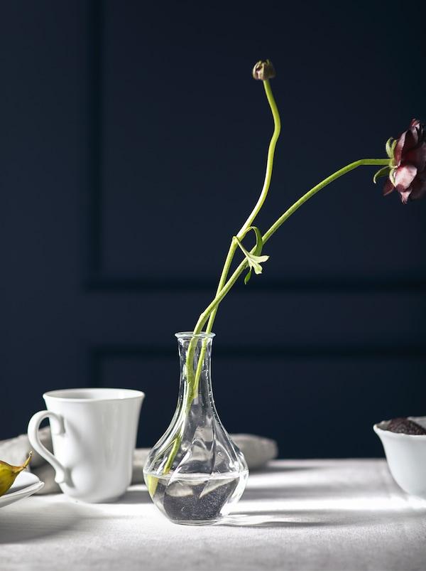 Dwa kwiaty z długą łodygą włożone do niedużego, niskiego szklanego wazonu VILJESTARK ustawionego na białym obrusie.