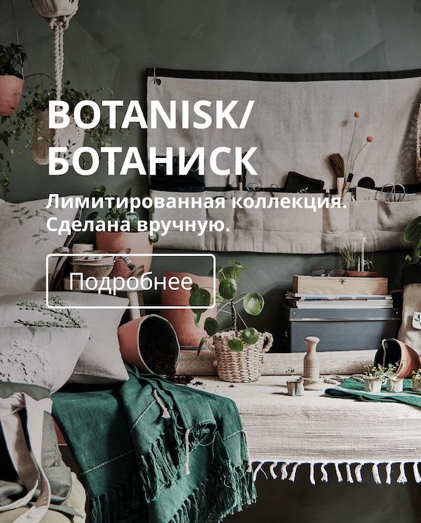 Лимитированная коллекция БОТАНИСК