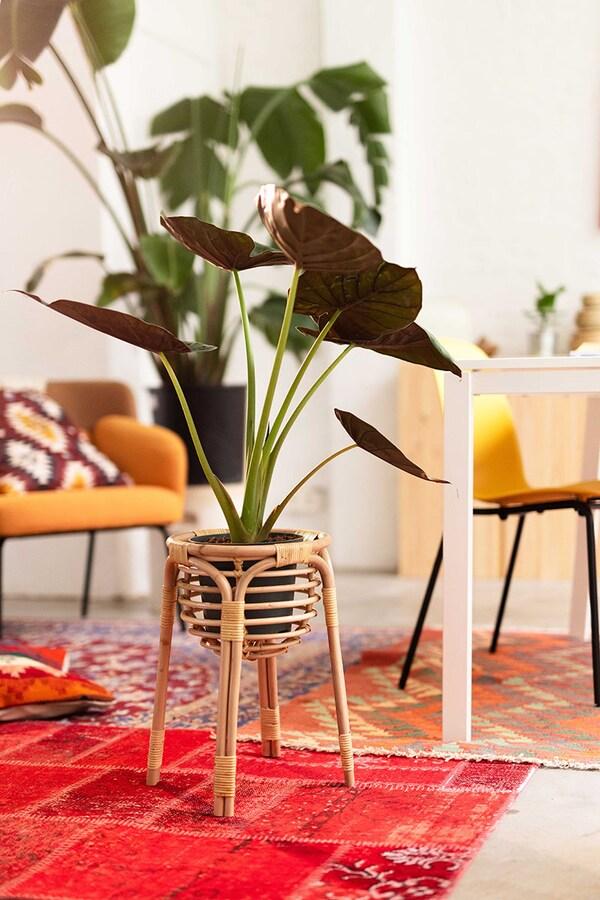 Een rotan plantenstandaard op een rode persische mat