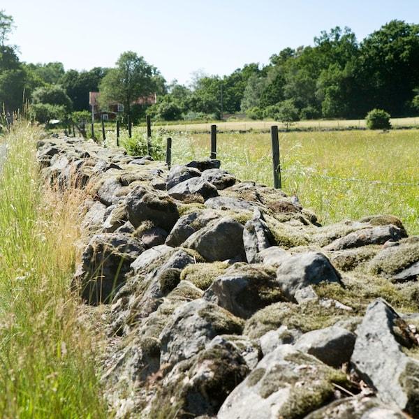 Een stenen muur die grenst aan twee velden in Älmhult, Zweden, de geboorteplaats van IKEA