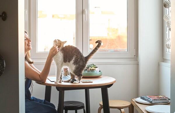 Een vrouw zit in de serre aan een ronde tafel met een donker houten bovenblad en zwarte poten en aait de kat op tafel.