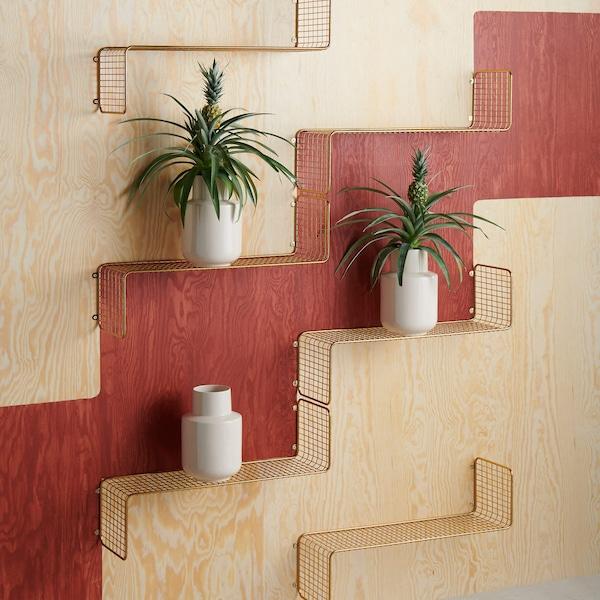 Efficient wall shelving units holding plants.